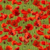 Remembering Poppies- Green D